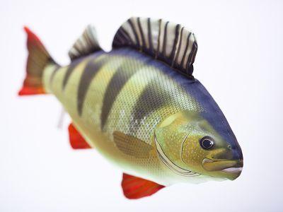 Riba - igrača GABY The Perch 50 cm - ostriž | GP-175051