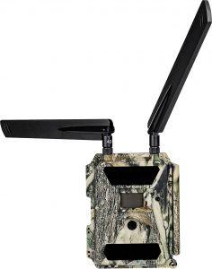Kamera s pošiljanjem MMS DÖRR SnapShot Cloud 4G - Game & Surveillance camera | 204440